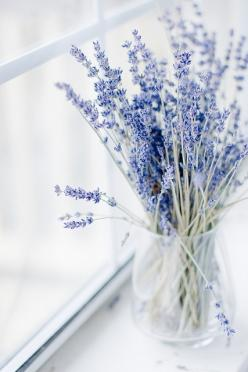 S i m p l y ♥ L o v e l y: Lavender Bouquet, Blue, Lavender Flowers, Fresh Lavender, Good Morning, Of Lavanda, Floral