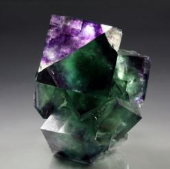 sarahmagdalena:    I cant explain how much I love this picture! Fluorites oh Fluorites…: Gems Crystals Minerals, Gemstones Minerals, Color, Gemstones Crystals, Crystals And Gemstones, Crystals Mineral Rocks, Photo