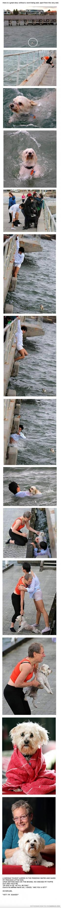 Saving a dog... the story at the end cracks me up.: Saves Dog, Amazing Stories, Sweet, Hero, Humanity Restored, German, Faith Restored, Faith In Humanity, Acts Of Kindness