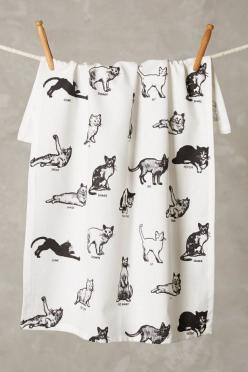 Secador de trastos con diseño de gatos:: Cats, Gift Ideas, Dishtowel Anthropologie, Commands Dishtowel, Anthropologie Com, Kitchen, Cat Commands, Cat Lady