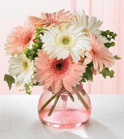 Simple flower arrangements for decorating your home: Gerber Daisies, Gerbera Daisies, Wedding Ideas, Gerbera Daisy, Flower Arrangements, Simple Flower, Floral Arrangements, Flowers, Favorite Flower