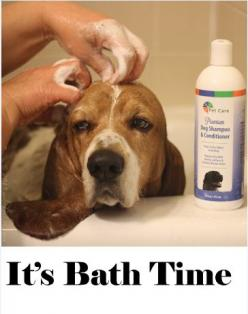 Spring has sprung it's time to wash off all the yuck and muck of winter! http://bvhpetcare.com/premium-dog-shampoo-conditioner/: