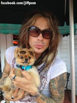 Steven Tyler and his adorable Pom: Celebrity Pets, Pompom, Aka Dogs, Animal 01, Dogs Poms, Pomeranians ️, Cats And Dogs, Steven Tyler, Celebrity Dogs