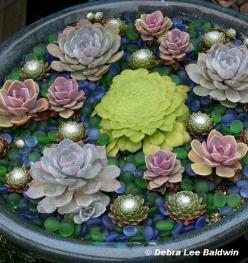 Succulents.  This is so artistic.  It looks like a pond of lotuses and water lilies, accented by tea lights at night.: Garden Ideas, Container Garden, Outdoor, Succulent Container, Delicious