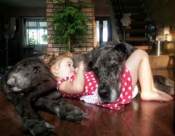The Cutest Thing You'll See Today: 22 Kids and Their Big Dogs: Animals, Girl, Friends, Sweet, Pets, Baby, Kids, Photo, Big Dogs