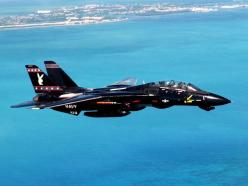 """The famous black U.S. Navy """"Playboy Bunny"""" Grumman F-14 Tomcat, Vandy-1 of the VX-09 """"Vampires"""" squadron, one of the Navy's Naval Air Systems Command Test and Evaluation Squadrons.: Military Aircraft, Air Force, Airplanes, Aircraft, F1"""