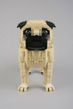 The funniest dog I've ever come across with. I didn't fancy them at first, but once I had the chance to hang out with pugs, i completely melted for them. Adorable, cute and extremely funny!: Lego Puggie, Lego Dogs, Awesome, Art, 12 Photos, Lego Pu