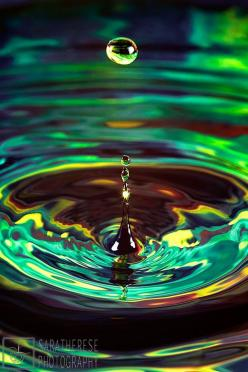 The other day was my first experience doing water droplet photography, so I am in no way an expert. But, I did do a bit of research ahead of time, and thought it might be helpful or interesting to...: Photography Colors, Water Drop Photo, Colors Photograp