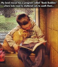 This is brilliant. Whoever came up with this idea is a genius. Mutually beneficial.: Animal Rescue, Reading, Animals, Shelters, Children, Photo, Book Buddies