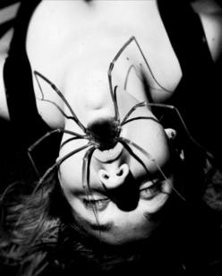 This is what nightmares are made of - I can't even look at spiders, but this photo is so incredible I've become obsessed!: Scary, Creepy, Spiders, Mouth, Nightmare, Art, Dark Side, Horror, Photo