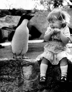 :-)  This picture makes me feel how this little girl looks.: Picture, Face, Little Girls, Thought, Animal