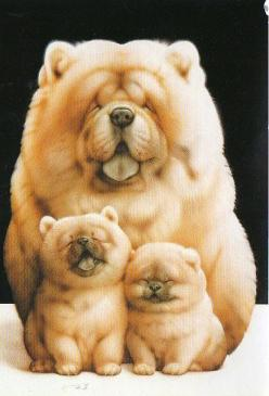Top 5 Most Expensive Dog Breeds Of World: Chow Family, Dogs, Muramatsu Dog, Puppy, Family Photo, Animal