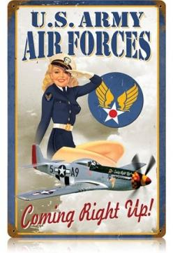 US Army Air Forces: Airforce, Pinups, Vintage, Metals, Pinup Girls, Metal Signs, Pin Ups, Pin Up Girls