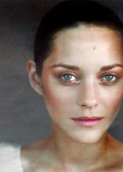 Warm copper tones work wonders for blue-eyed ladies, as evidenced by Marion Cotillard #ColorTheory: Eye Makeup, Fresh Face, Beautiful, Art, Amazing Eyes, Marion Cotillard, Beauty, People