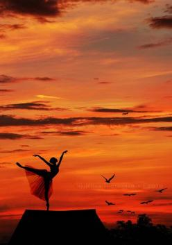 """When it comes to going after what you love in life, don't take no for an answer."" -  Regina Brett: Dancing, Silhouette, Sunsets, Art, Beautiful, Ballerina, Ballet, Photography"