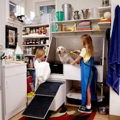 When we build our laundry room add-on, I definitely want a dog washing station like this in there!: Dogs, Awesome Dog, Dog Washing Station, Pet, Dog Grooming, Laundry Rooms, Dog Shower, Dog Rooms