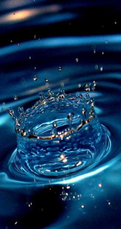 You crown the year with Your goodness, And Your paths drip with abundance. Psalm 65:11: Beautiful Blues, True Blue, Blue Droplets, Art, Blue Water, Raindrop, Water Droplets, Rain Drop