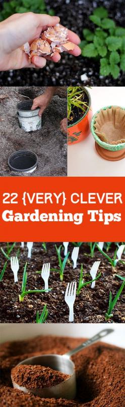22 Insanely genius gardening tips and tricks for your yard and garden. Fun Tips, tricks and tutorials.: Fun Gardens, Gardening Tips And Tricks, Fun Gardening Ideas, Genius Gardening, Garden Tips, Clever Gardening, Fun Garden Ideas