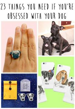 23 Things You Need If You're Obsessed With Your Dog: 23 Things, Doggie, Dogs, Pet, Dog People, Adorable Things, 23 Adorable, Crazy Dog, Animal