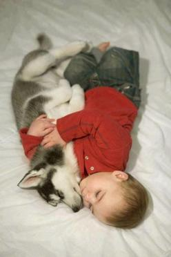 25 Adorable Photos That Prove Why Babies Need Pets: Animals, Sweet, Dogs, Pet, Husky, Puppy, Baby, Friend, Kid