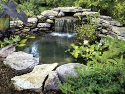 A backyard pond can be beautiful and soothing.  But they can also be expensive and a lot of work to maintain.  Make sure you do some planning before you start digging! My sister loves her pond, sits by it often, and her fish have lived years in it.: Pond