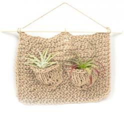 A little home for your air plants!: Airplants, Plant Hangers, Plants Www Mooreaseal Com, Plants Http Www Mooreaseal Com, Air Plants, Craft Ideas, Products
