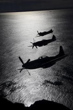 A P- 51Mustang, in the middle a Spitfire Mk XIV, in the back a Spitfire Mk XVI.: Cavalier Mustang, Mustangs, Airplane, Aircraft, P 51 Mustang, Photo, Military