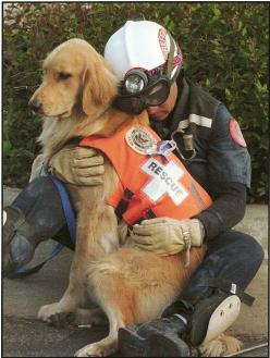 A Search and Rescue Worker hugs his dog... Oklahoma City, Ok. April 15th 1995... May All who were affected by this day continue to be blessed and loved by the Divine.: Rescue Dogs, Animals, Heroes, Pet, Friend, Man, Golden Retriever