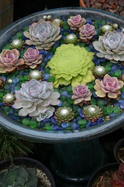 A succulent 'water' garden! very cool. crushed colored glass has same effect. hmmmm. I have an idea...: Garden Ideas, Container Garden, Outdoor, Succulent Container, Delicious