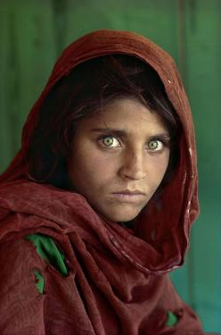 "Afghan Girl. This photo was taken as part of the National Geographic ""Green Eyes"" project, tracking the genetic trait of green eyes passed down through the Mongols of Genghis Khan's time.: Photos, Afghans, Girls, National Geographic, Steve Mccurry, Photog"