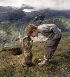 An 8-year-old boy in Austria has made friends with a local colony of marmots. It's the cutest thing ever. I can only imagine what amazing things he is learning about the world.: Photos, 8 Year Old, Animals, Friends, Marmot, Boys, Children, Kids, Photograp