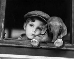 baby boy, baby elephant : Picture, Babies, Animals, Sweet, Baby Elephants, So Cute, Boy, Photography