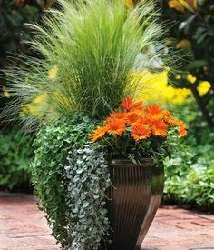 Beautiful container: Garden Container, Container Gardens, Garden Ideas, Fall Container, Container Gardening