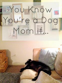 Because I Said So: How To: Know Your Dog is Really Your Child: Child And Dog, Dogs, Dogma, Dog Mom ️ ️, Furbabies, Dog Mom Tanner, Dog Mom Quotes, Children, Animal