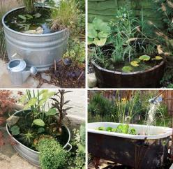 Before summer rolls around why not create a container pond? You know,  a pond in a large container! You can use a large flower pot, bucket, large tin bucket, you name it.: Water Feature, Pond Ideas, Garden Ideas, Water Gardens, Gardening Ideas, Container