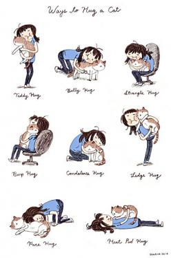 Belly hug! Grab da belly and rub then move in for the big squeeze!: Face Hug, Cats, Kitty Cat, Cat Hugs, Crazy Cat, Cat Lady, Animal