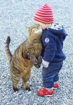 Best friends forever - this picture is so dear! The little boy seems not to be hugging/loving back. Wonder why? But the kitty is SO totally in love with this boy. Cats are particular about how they feel about various people. I'm a life-long cat lover/