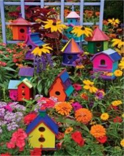 birdhouses: Garden Ideas, Colors, Outdoor, Gardens, Gardening, Colorful Birdhouses, Bird Houses, Birds, Flower