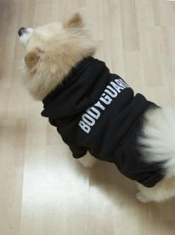 "Black ""Bodyguard"" Dog Hoodie - Cute for your Sweet Dog 