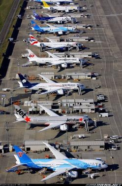 Boeing 787-8 Dreamliner aircrafts waiting to be delivered to customer airlines in Seattle, WA.: Flight, Helicopters Airplanes Drones, Boeing S 787, Boeing 787 8, 787 8 Dreamliners, Airplanes Airports