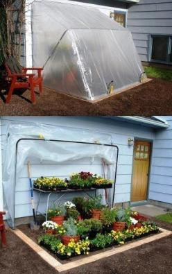 clever home hot house idea...gardening diy!I can do this!: Green Houses, Green Thumb, Garden Ideas, Outdoor, Greenhouses, Gardens, Gardening, House Idea, Diy