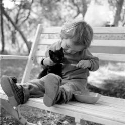Come on...eat for momma...its good for ya! :)        We had a little black kitten and my girls used to feed her apple sauce from a baby spoon.  This brings back soooo many precious memories for me and my girls.  <3: Photos, Cats, Animals, Sweet, Pet, C