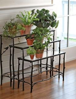 Display your plants on Nesting Branch Plant Stands, Set of 3 | gardeners.com: Idea, Branch Plant, Plant Stands, Plants, Nesting Branch, Branches