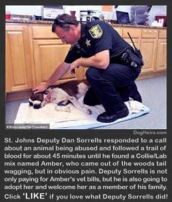 Dog rescue ❤️❤️. Click link to read more about this awesome story- http://www.dogheirs.com/tamara/posts/2626-compassionate-deputy-who-rescued-stabbed-dog-plans-to-adopt-her: Animal Rescue, Animals, Heart, Dogs, Humanity Restored, Heroes, Faith, Dan Sorrel