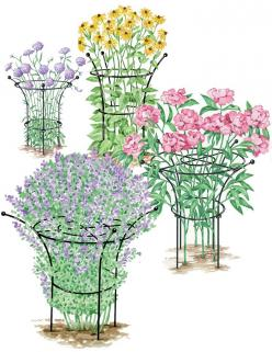 Essex Plant Support. Attractive plant supports hold flowers in a graceful shape and prevent flopping. Made from long-lasting, heavy-duty, powder-coated steel. Small Supports are sold in sets of 2. Medium, Large and X-Large Supports are sold individually: