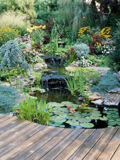 Every dream home should have a water garden like this one that is shown by Better Homes and Gardens. It is so peaceful and pretty to look at.: Ponds, Landscaping Ideas, Water Gardens, Water Features, Backyard, Watergarden