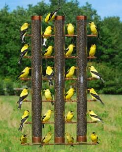 Feed 24 finches at once with this bird feeder: 3 Tube Finch, Finch Feeder, Birdhouse, Bird Feeders, Backyard, Garden, Birds
