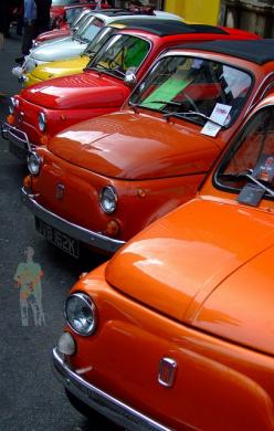 Fiat 500s. Photo by Geoff B on Flickr: Cars Pinnokky, Fiat 500S, Cars Collection, Fiat500 600, 500 Color, Cars, Classical Cars, Cars Carshowsafari, Photo