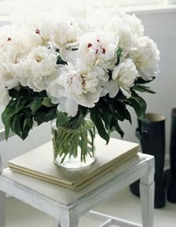 Flowers add that special something to any room in the house. White peonies are my favorite because they remind me of my wedding last Spring!: White Flowers, Flower Arrangements, Bloom, Fresh Flowers, Floral Arrangements, White Peonies, Garden, Flower, Fav