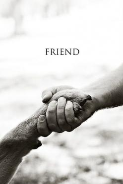 Friends for life: Animals, Best Friends, Dogs, Quotes, Bestfriends, Pet, My